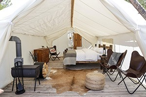 Grand Canyon Under Canvas : Luxury camping on 56 secluded acres of beautiful forest along historic Route 66 at The Gateway to the Grand Canyon! Choose from one of our 3 gorgeous luxury tent types.