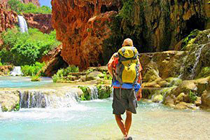 Four Season Guides - in Park tour experts