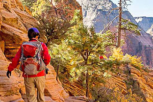 See the 'Real' Grand Canyon | Wildland Trekking