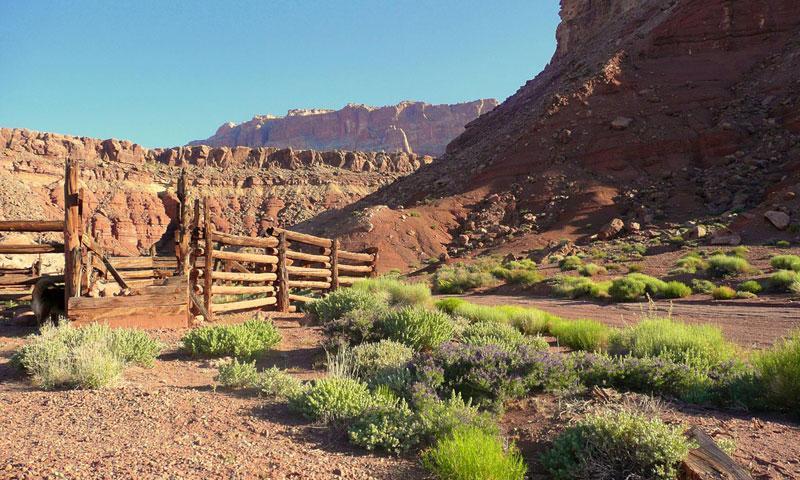 Vermilion Cliffs National Monument Arizona Alltrips