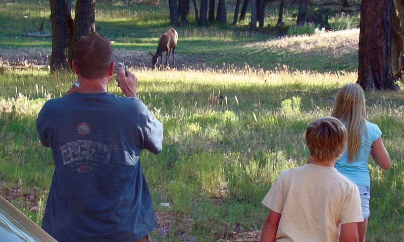 Grand Canyon National Park Family Vacations