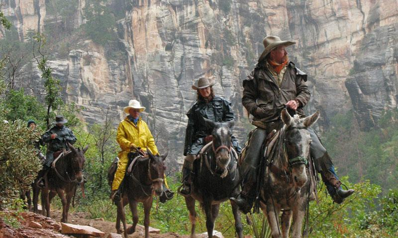 Horseback Riding in the Grand Canyon's North Rim