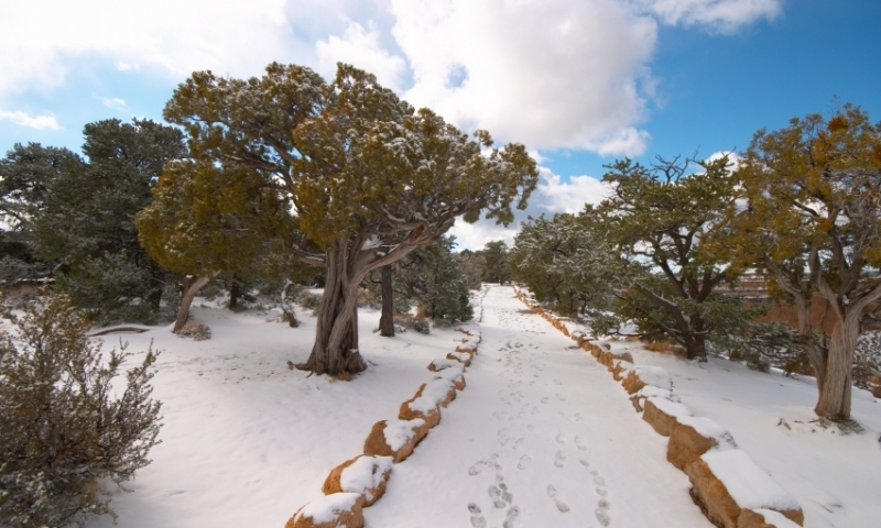Grand Canyon National Park Arizona Winter Trail Snow Hiking