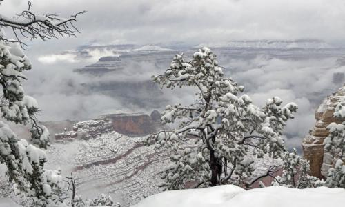 Snow along the South Rim