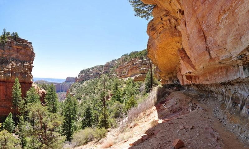 Cliff Springs Trail on the North Rim